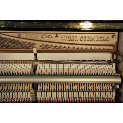 Wilh. Steinberg AT-K30 New Upright Acoustic Piano German Brand Acoustic Piano Best Home Piano (AT-30 / AT30)