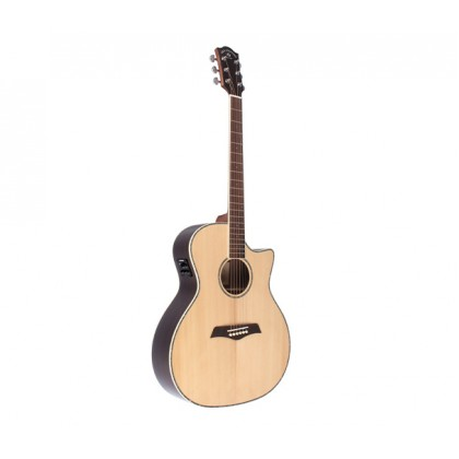 Wilh. Steinberg PG20SCE Acoustic Guitar Acoustic-Electric Guitar (PG-20SCE)