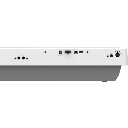*LATEST* Roland FP-30X 88-key Digital Piano (FP30X / FP 30X)